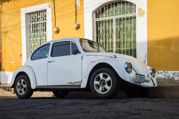 Beetle @Leòn